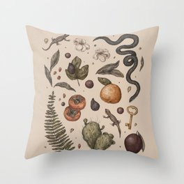 Florida Nature Walks Throw Pillow