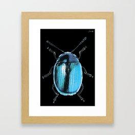 Insecte blue métal colors fashion Jacob's Paris Framed Art Print
