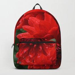 Fresh Rain Drops - Red Dahlia Backpack