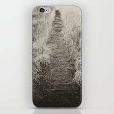 Way Of The Past iPhone & iPod Skin