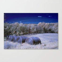 The Hay Field Canvas Print