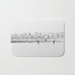 Flock of Terns and Pelicans in the Florida Bay Bath Mat