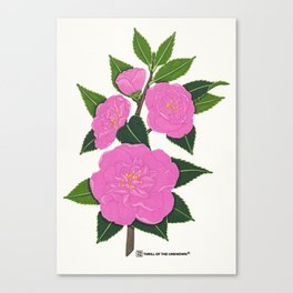 PINK WINTER CAMELLIA I Canvas Print