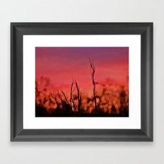 Losing Light Framed Art Print