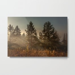 Autumn sun beam Metal Print