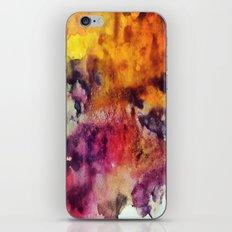2/3 iPhone & iPod Skin