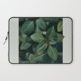 Growth III Laptop Sleeve