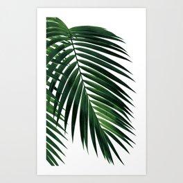 Tropical Green Palm Leaf #1 #botanical #decor #art #society6 Art Print