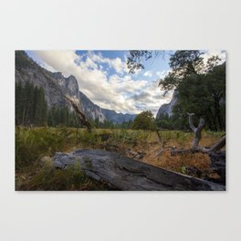 In the Valley. Canvas Print