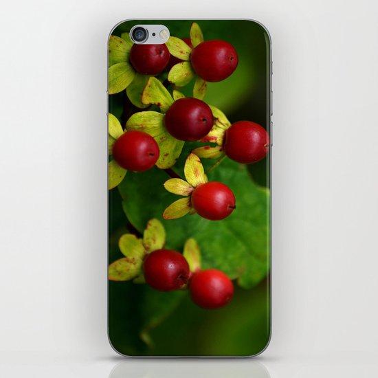 Berry Good! iPhone & iPod Skin