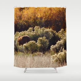 Palomino Pony in Autumn Golds photography by CheyAnne Sexton Shower Curtain