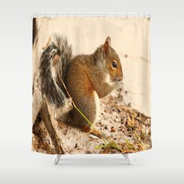 Squirrels Meal Shower Curtain