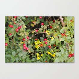 Flower and Berries Canvas Print