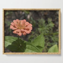 Jane's Garden - The Peachy Orange Flower Serving Tray