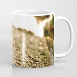 Japan - Tokyo Imperial Palace Coffee Mug