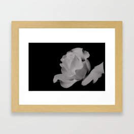 Stone Rose Framed Art Print