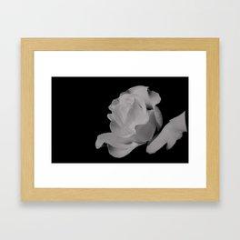 Stone Rose Framed Art Print