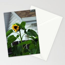 Looking Like a Sunflower Stationery Cards