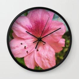 Azalea Wall Clock
