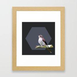 Spotted flycatcher Framed Art Print