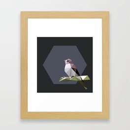 Spotted flycatcher Framed Art Print
