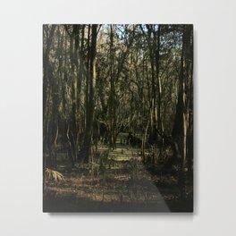 Swamp Scene Metal Print
