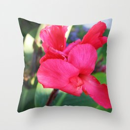 Summer at Schedel Throw Pillow