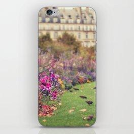 little birds iPhone Skin