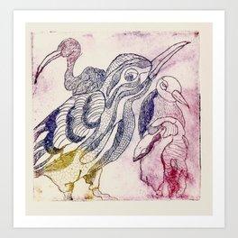 fascinating birds Art Print