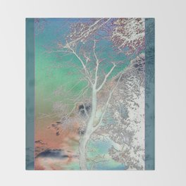 Sunset Birch Tree Throw Blanket