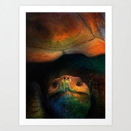 Turtle Oil Painting Acrylic Art Animal Wildlife Ocean Reptile Sea Turtles Hyper Illustration Art Print
