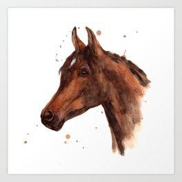 Watercolor HORSE painting, horses, hore art, stallion Art Print