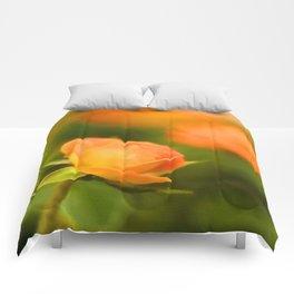 MS Rose Comforters