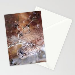 Owl :: In the Pines Stationery Cards