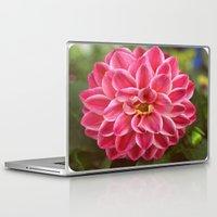 dahlia Laptop & iPad Skins featuring Dahlia by Leisha Cross