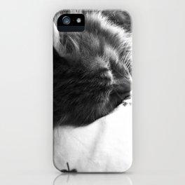 Sleepy iPhone Case
