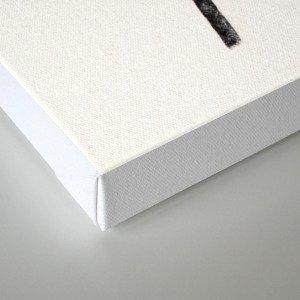 Shoulders Canvas Print