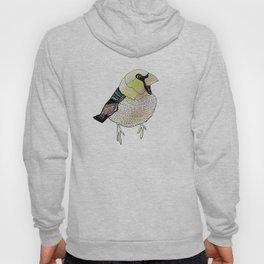 Mr Bird Hoody