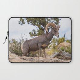 Beautiful Big Horn Sheep Laptop Sleeve