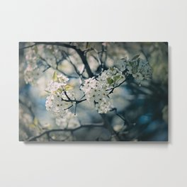 Midsummer's Dream Metal Print