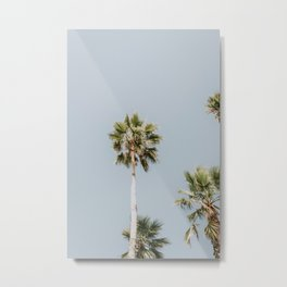 Alameda Palms Metal Print