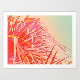 Living Coral Feather Palm Art Print