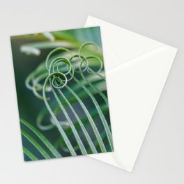 Palm frond spirals Stationery Cards