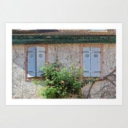 Windows and Pink Roses Art Print