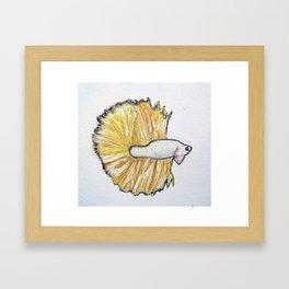 Golden Fish Framed Art Print
