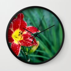 Lily Rain Drops in Red - A macro image with bokah Wall Clock