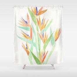 Birds of Paradise ~ tropical bouquet Shower Curtain