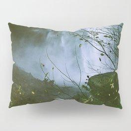 Waterfalls. Flowers. Nature. Pillow Sham