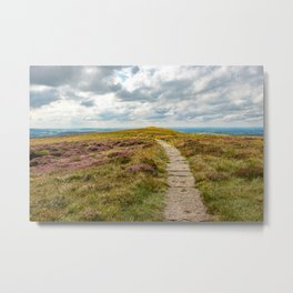 Walkway across a green and purple field Metal Print