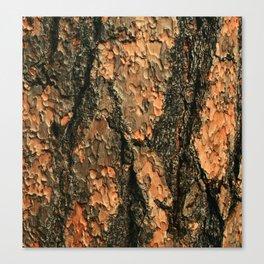 Eco Bois Canvas Print